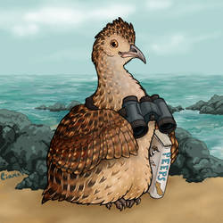 Birding Tinamou by Ciameth