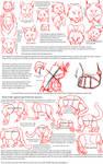 Big Cat Anatomy Sketches