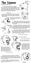 Educational Art Tutorial: The Lioness