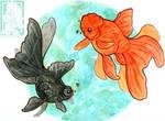 Goldfish duo