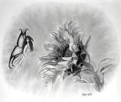 fairy love sunflower by javaniles