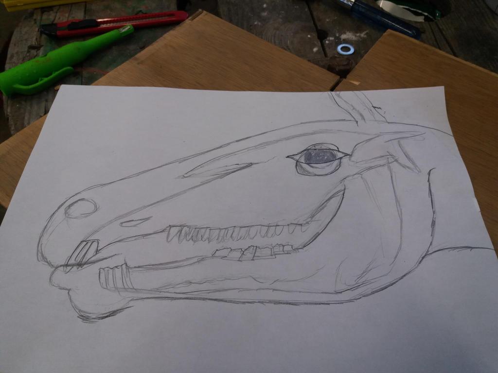 Horse head sketch by sprytose