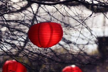 Chinese Lanterns by AinsleyFerin