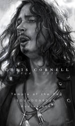 A tribute to ChrisCornell
