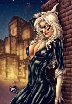 Black Cat (colors)