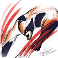 Wolverine by shawnishere