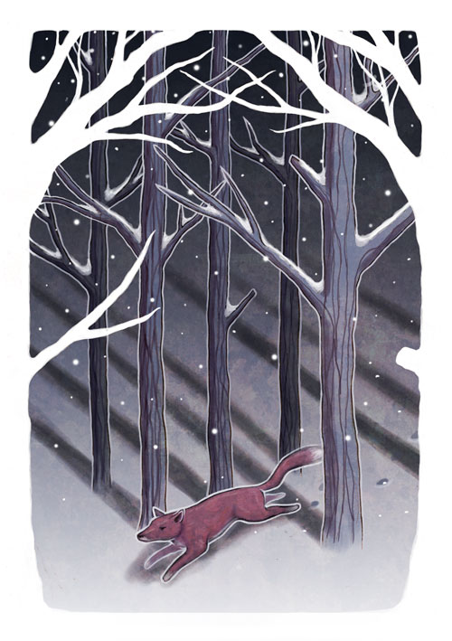 Winter Fox by Segundus