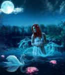 Swan Lake Beauty by areemus