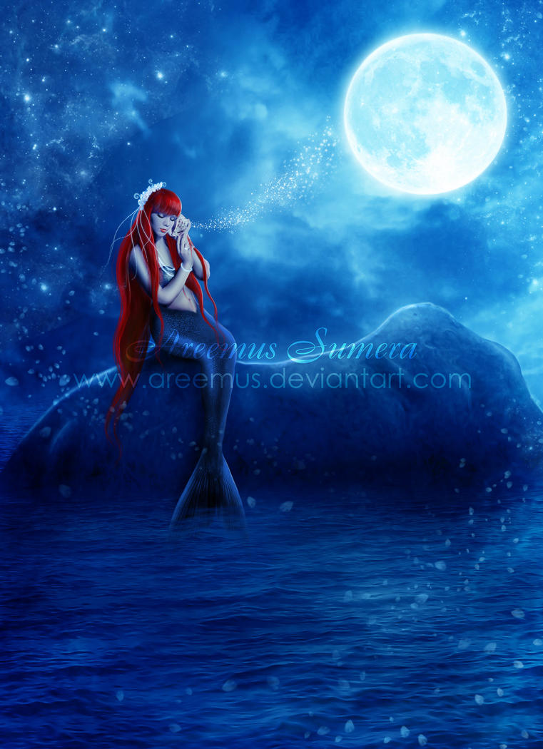 Book Cover Pictures S : Mermaid a magical night by areemus on deviantart