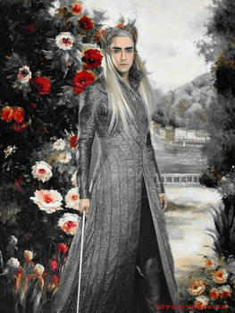 King Thranduil roses