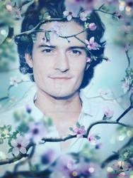 Orlando Bloom cherry tree