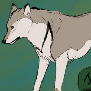 Eoh-Rune-Wolf's Profile Picture