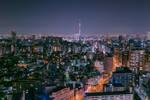 Metropolis colours of the night