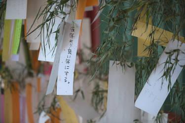 Tanabata 2017 by stephane-bdc