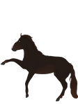 Horse YHH (Closed)