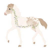 N6712 Padro Foal Design by Mini-Luicifer