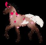 N7164 Padro Foal Design