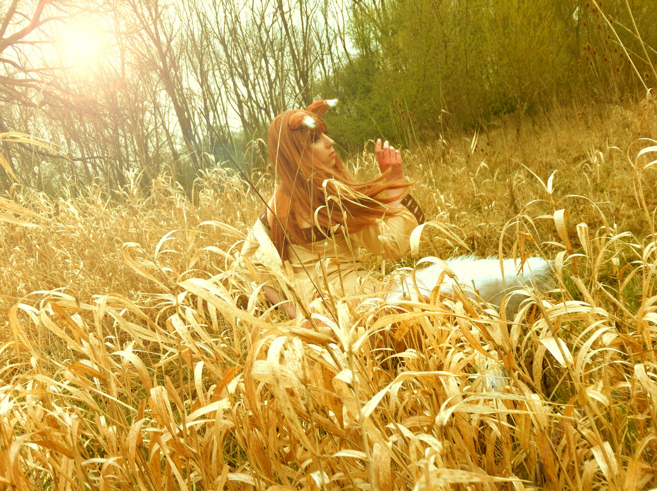 Spice and Wolf Horo Cosplay - Just a Look by K-I-M-I