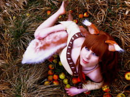 Spice and Wolf Holo Cosplay Picture by K-I-M-I