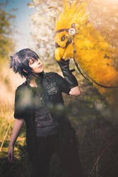 Noctis Lucis Caelum and the Chocobo - FFXV Cosplay