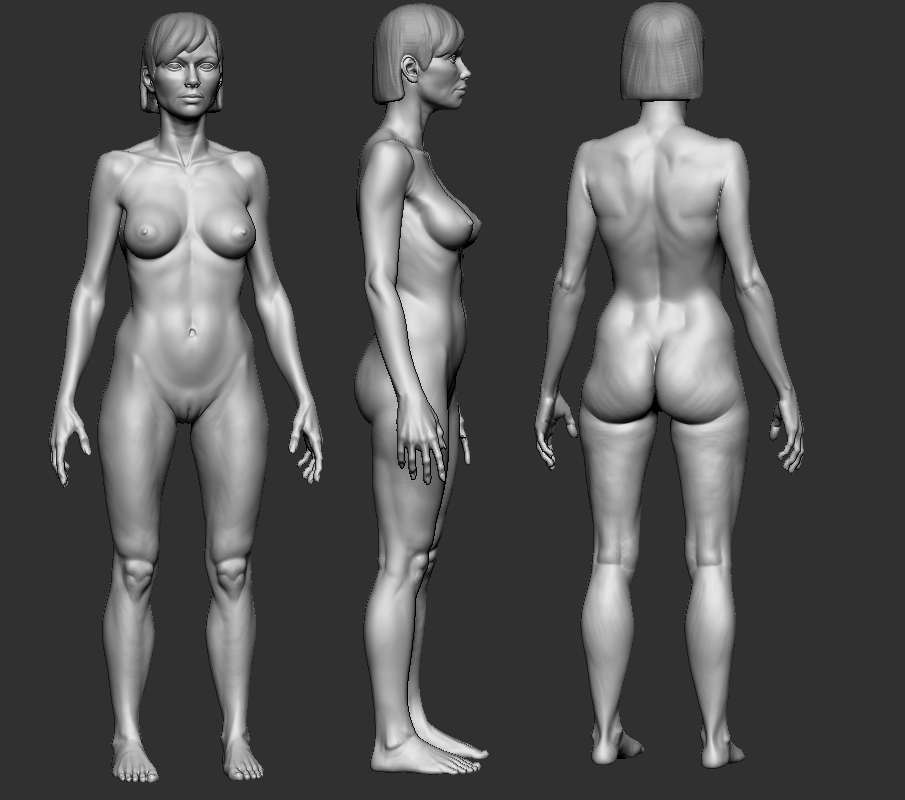 Anatomy study by slocik