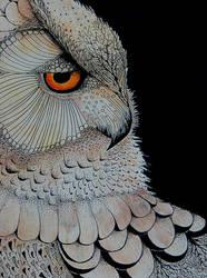 Owl Medicine by WaldieWorks