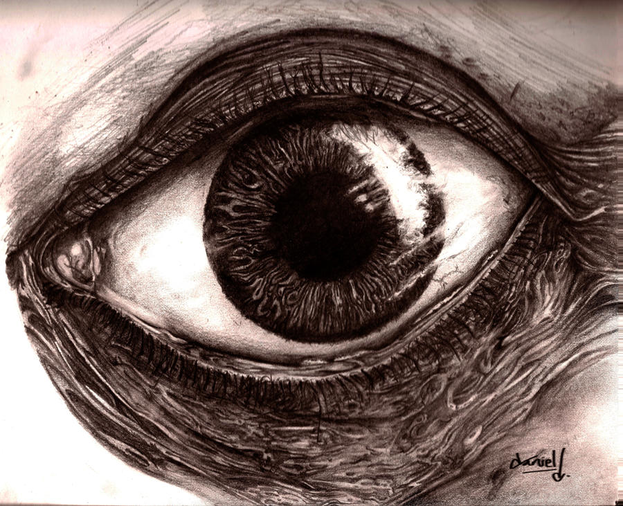 Eye WIP 4 by DanielNeeta