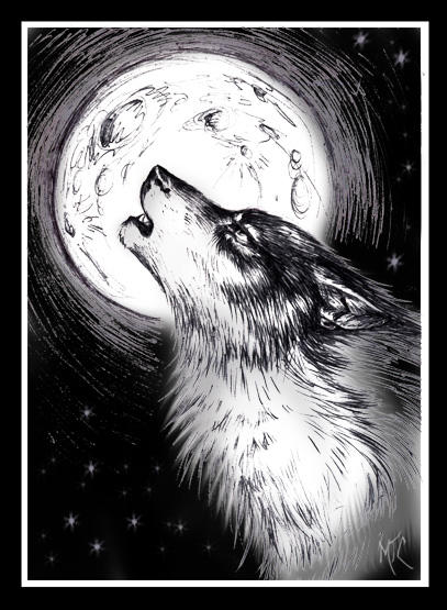 Wolf Moon Drawing Moon by Wolf Moon Drawing