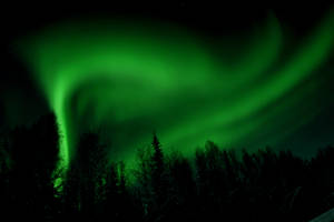 Beautiful Northern Lights by artapps