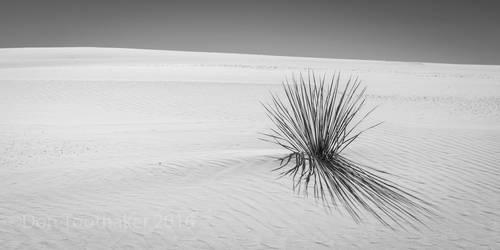 White Sands D756687-1-2