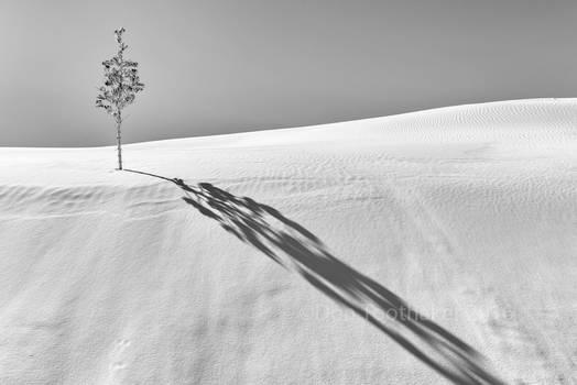 Dune Art D756664-1