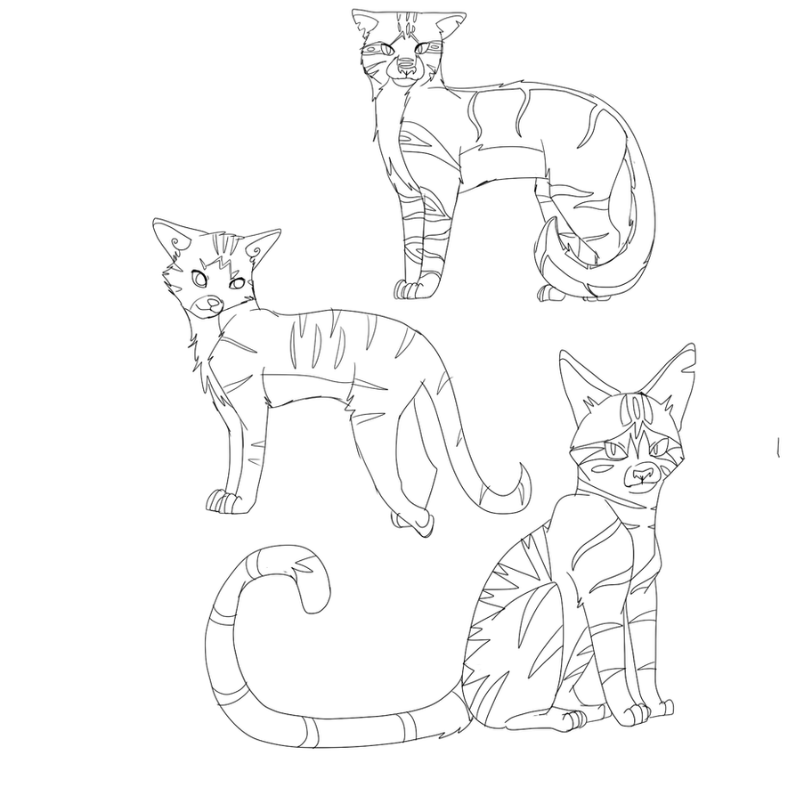 warrior cats sketches by miudream on deviantart