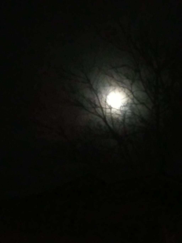 Moon shot taken March 10, 2017 by SinfulLusinda