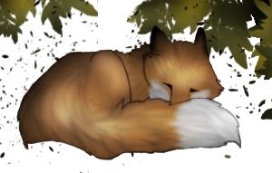 red-sunfox's Profile Picture