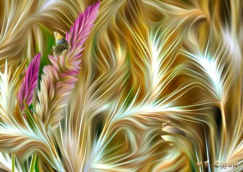 The bird  in the wheat field by vafiehya