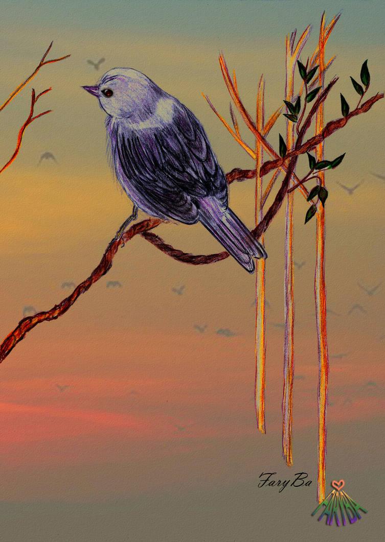 Small sparrow by vafiehya