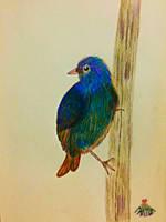 A Little blue bird! by vafiehya