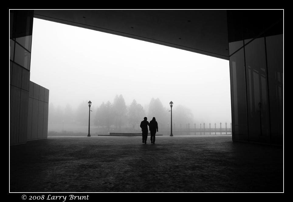 Foggy Morning by inessentialstuff