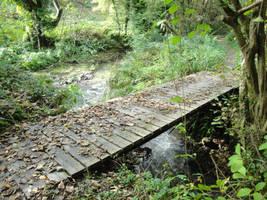Wood Bridge in Wales