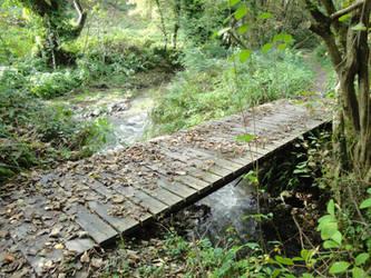 Wood Bridge in Wales by DerKnob