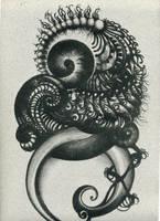 fetuspiral by satorihime