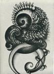 fetuspiral