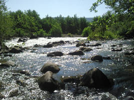 River by elfbiogreen