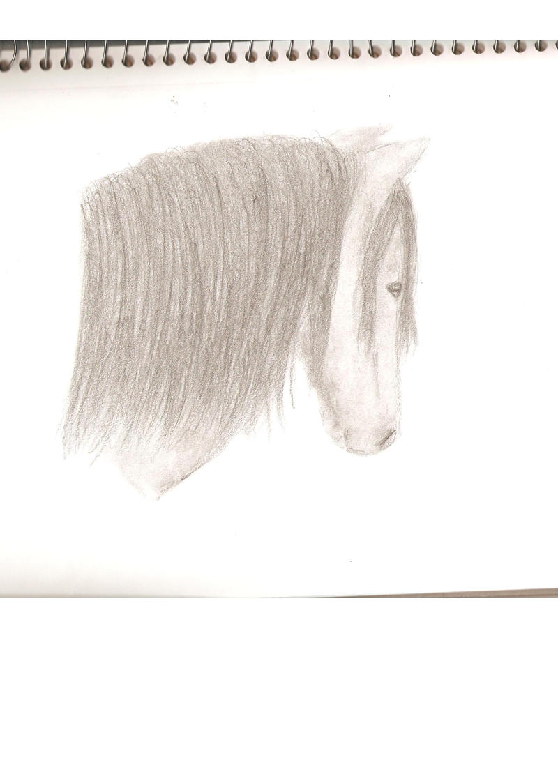 My Art!! -Still adding- Horse_Drawing_by_Horse_Lover95