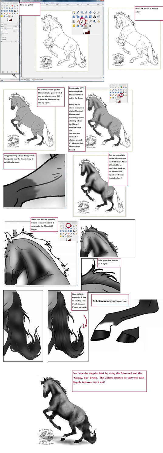 Line Drawing Gimp : Easy lineart coloring tutorial by horse lover on deviantart