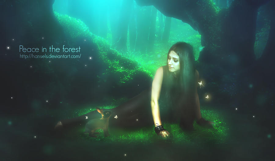 Peace in the Forest by hansels