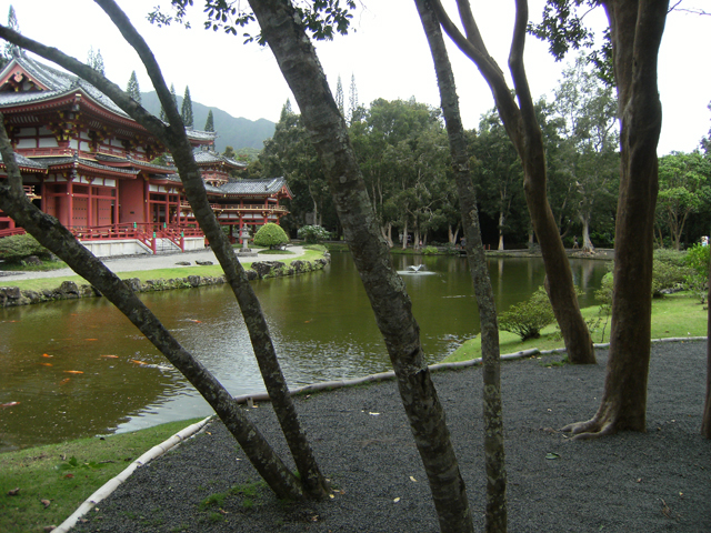 Tree-Lined Temple by rioka