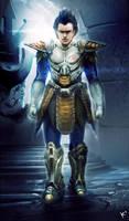 Dragonball Z Vegeta in armor by kclub