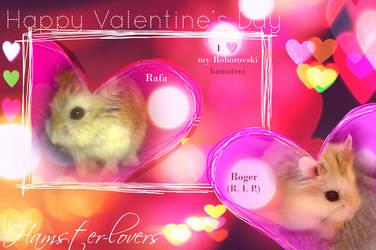 Happy Hamster Valentines
