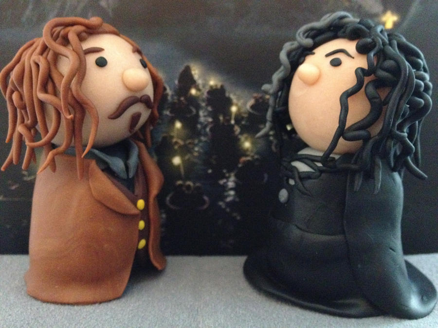 Sirius Black and Bellatrix by KatjaFin